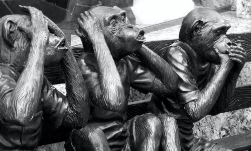 singe n'entend pas le mal