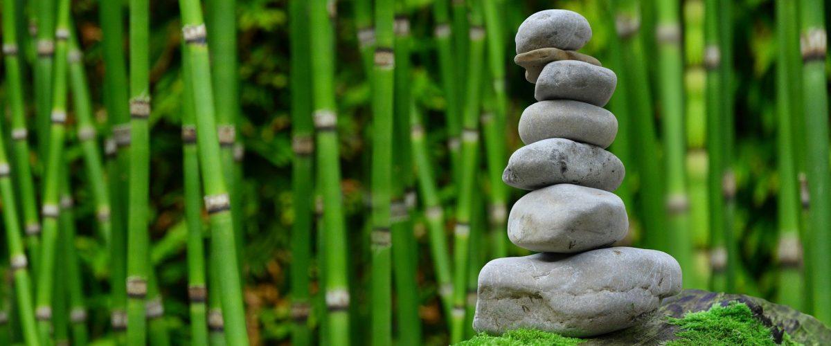 image zen pour le shiatsu décrivant une forêt de bambous et des galets en équilibre